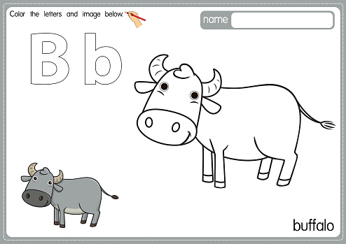 Vector illustration of kids alphabet coloring book page with outlined clip art to color. Letter B for Buffalo.