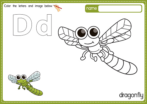 Vector illustration of kids alphabet coloring book page with outlined clip art to color. Letter D for Dragonfly.
