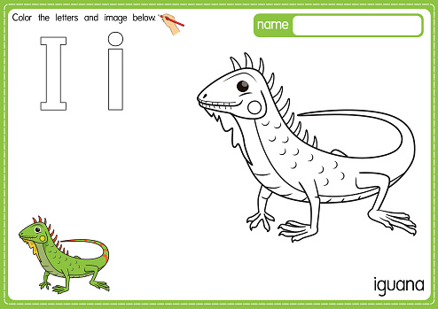 Vector illustration of kids alphabet coloring book page with outlined clip art to color. Letter I for Iguana.