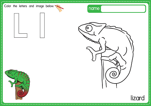 Vector illustration of kids alphabet coloring book page with outlined clip art to color. Letter L for  Lizard.