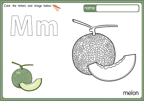 Vector illustration of kids alphabet coloring book page with outlined clip art to color. Letter M for  Melon.