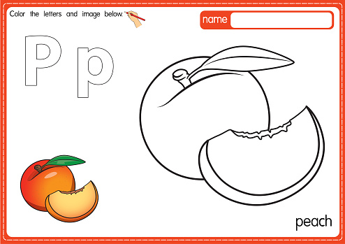 Vector illustration of kids alphabet coloring book page with outlined clip art to color. Letter P for  Peach.