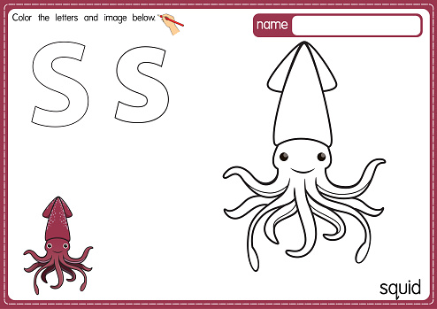Vector illustration of kids alphabet coloring book page with outlined clip art to color. Letter S for Squid.
