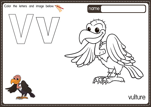 Vector illustration of kids alphabet coloring book page with outlined clip art to color. Letter V for Vulture.