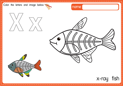 Vector illustration of kids alphabet coloring book page with outlined clip art to color. Letter X for X-Ray Fish.