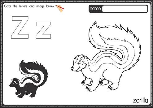 Vector illustration of kids alphabet coloring book page with outlined clip art to color. Letter Z for Zorilla.