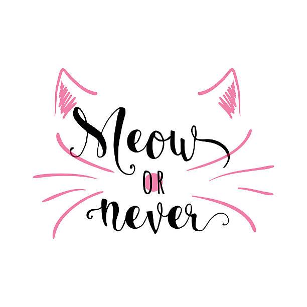 stockillustraties, clipart, cartoons en iconen met vector illustration of kitten calligraphy sign for print - miauwen