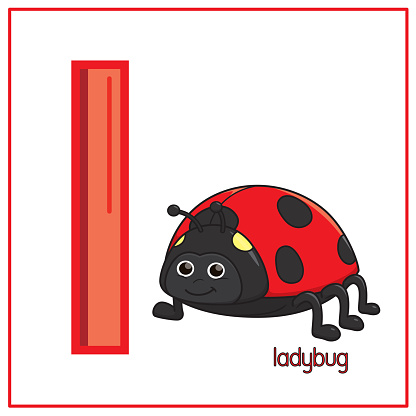 Vector illustration of Ladybug isolated on a white background. With the capital letter L for use as a teaching and learning media for children to recognize English letters Or for children to learn to write letters Used to learn at home and school.