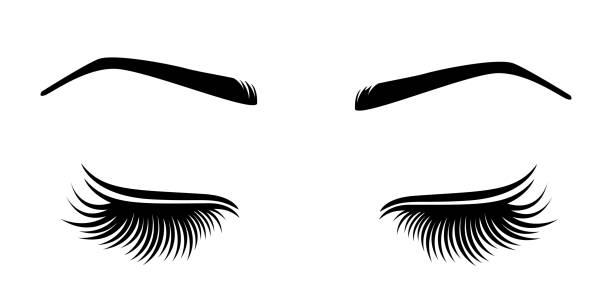 睫毛和額頭的向量說明。 - 睫毛 幅插畫檔、美工圖案、卡通及圖標