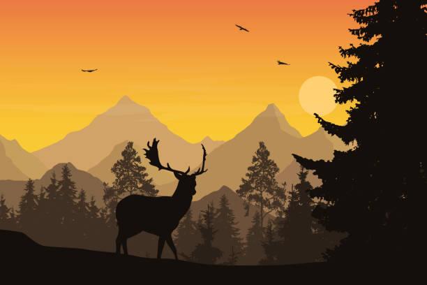 Coon Dog Treeing Clip Art Christmas   Eghrxg.howtocelebrate2020.info