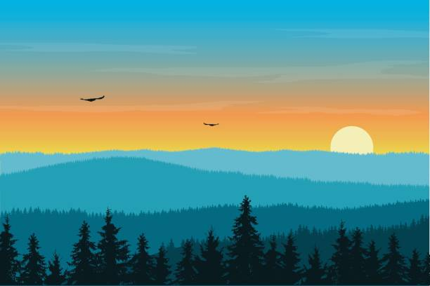 vector illustration of mountain landscape with forest in fog under morning orange sky with rising sun, clouds and flying birds - zachód słońca stock illustrations