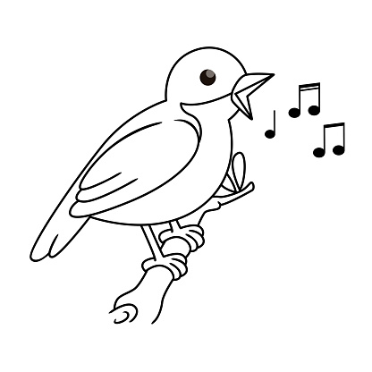 Vector illustration of nightingale isolated on white background. For kids coloring book.