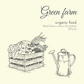 hand drawn vector illustration of organic products. sketch farmer harvest vegetables and watering. healthy food