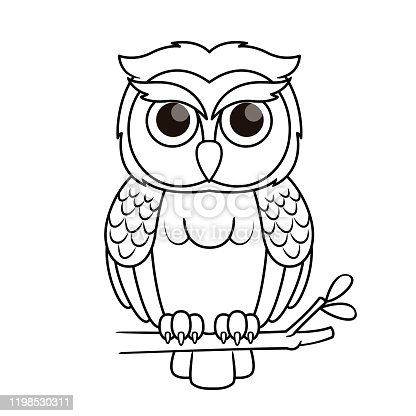 Vector illustration of owl isolated on white background. For kids coloring book.