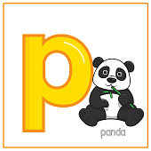 Vector illustration of Panda isolated on a white background. With the lower case letter P for use as a teaching and learning media for children to recognize English letters Or for children to learn to write letters Used to learn at home and school.