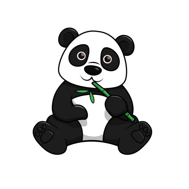 illustrations, cliparts, dessins animés et icônes de illustration de vecteur de panda d'isolement sur le fond blanc. - panda