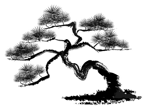 Vector illustration of pine tree.