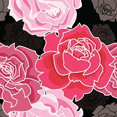 Pink roses on black background. Vector seamless pattern.