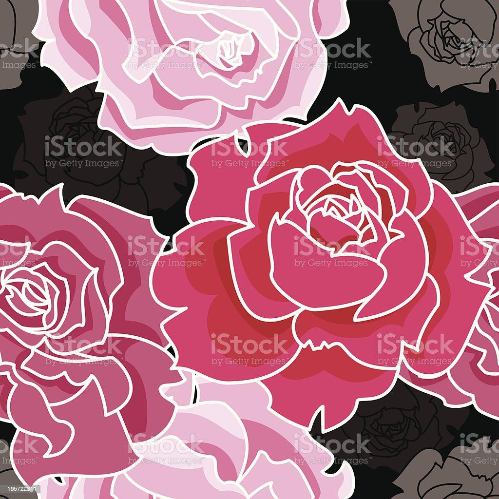 Vector illustration of pink roses on black vector art illustration