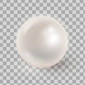 Vector illustration of realistic pearl isolated on transparen ba
