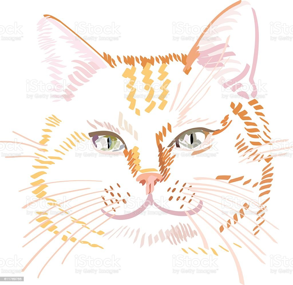 Vector illustration of red cat portrait vector art illustration