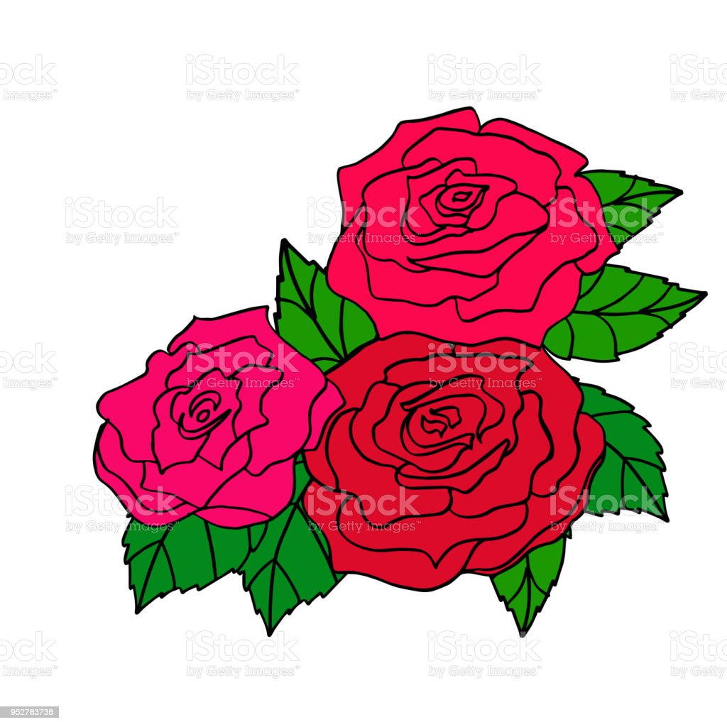 Vector Illustration Of Red Roses For Decoration Of Greeting Cards