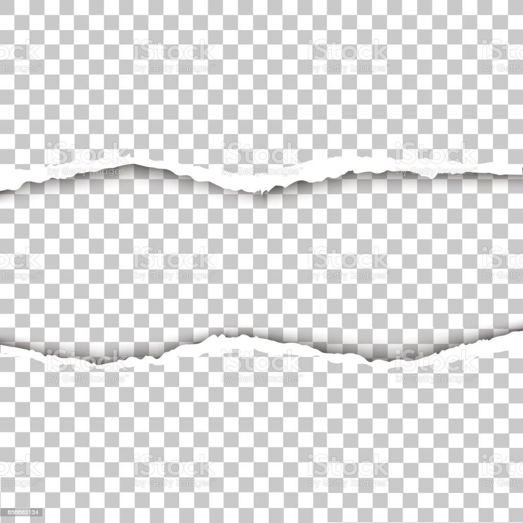 背景が透明な破れた紙のベクトル イラストベクター破れた紙 - からっぽの