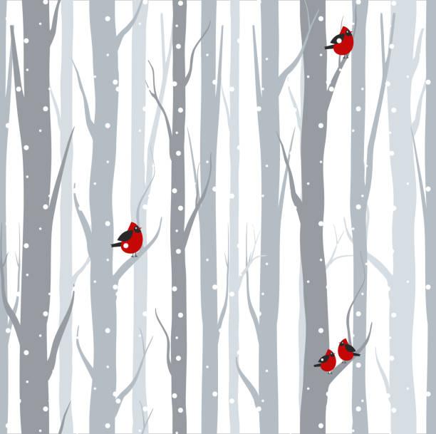 ilustrações, clipart, desenhos animados e ícones de ilustração do padrão sem emenda com bétulas cinza árvores e pássaros vermelhos no tempo de inverno, com neve no estilo cartoon plana de vetor. - inverno