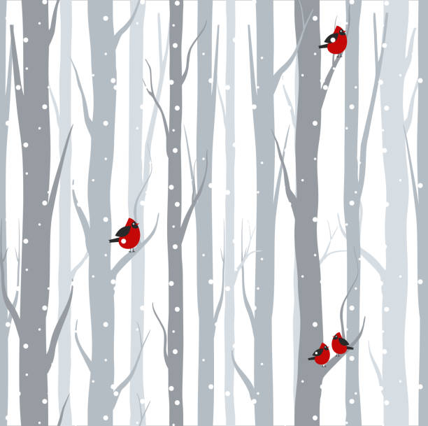 Vector illustration of seamless pattern with grey trees birches and red birds in winter time with snow in flat cartoon style. Vector illustration of seamless pattern with grey trees birches and red birds in winter time with snow in flat cartoon style bird backgrounds stock illustrations