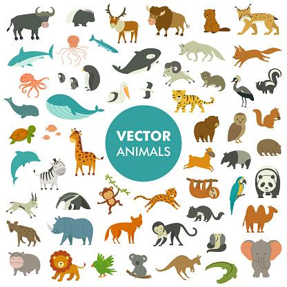 Vector Illustration of Simple Cartoon Animal Icons.