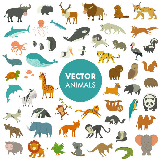 vector illustration of simple cartoon animal icons. - animals stock illustrations