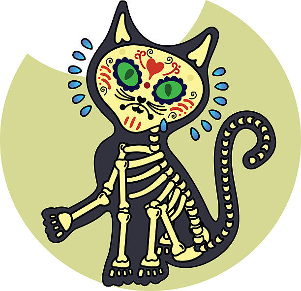 Vector illustration of skeletons Crying kitten. Vector flat and linear Illustration of skeleton. Web banners, advertisements, brochures, business templates. Isolated on a white background. cat skeleton stock illustrations