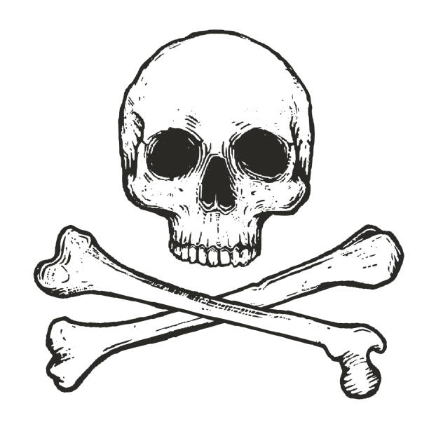 stockillustraties, clipart, cartoons en iconen met vectorillustratie van skull and crossbones - vervuiling