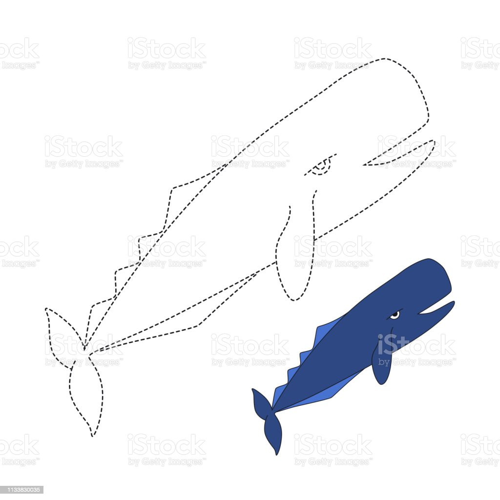 Vector Illustration Of Sperm Whale For Coloring Book Stock