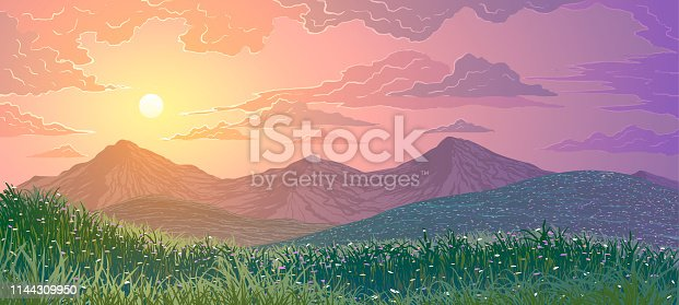 Vector illustration of spring landscape. Mountains, grass and meadows with flowers at sunset.