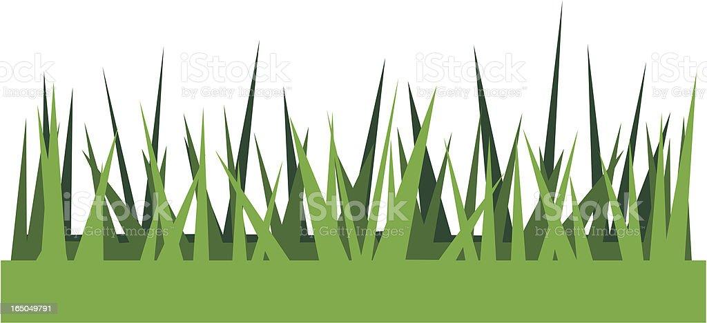 Vector illustration of summer grass vector art illustration