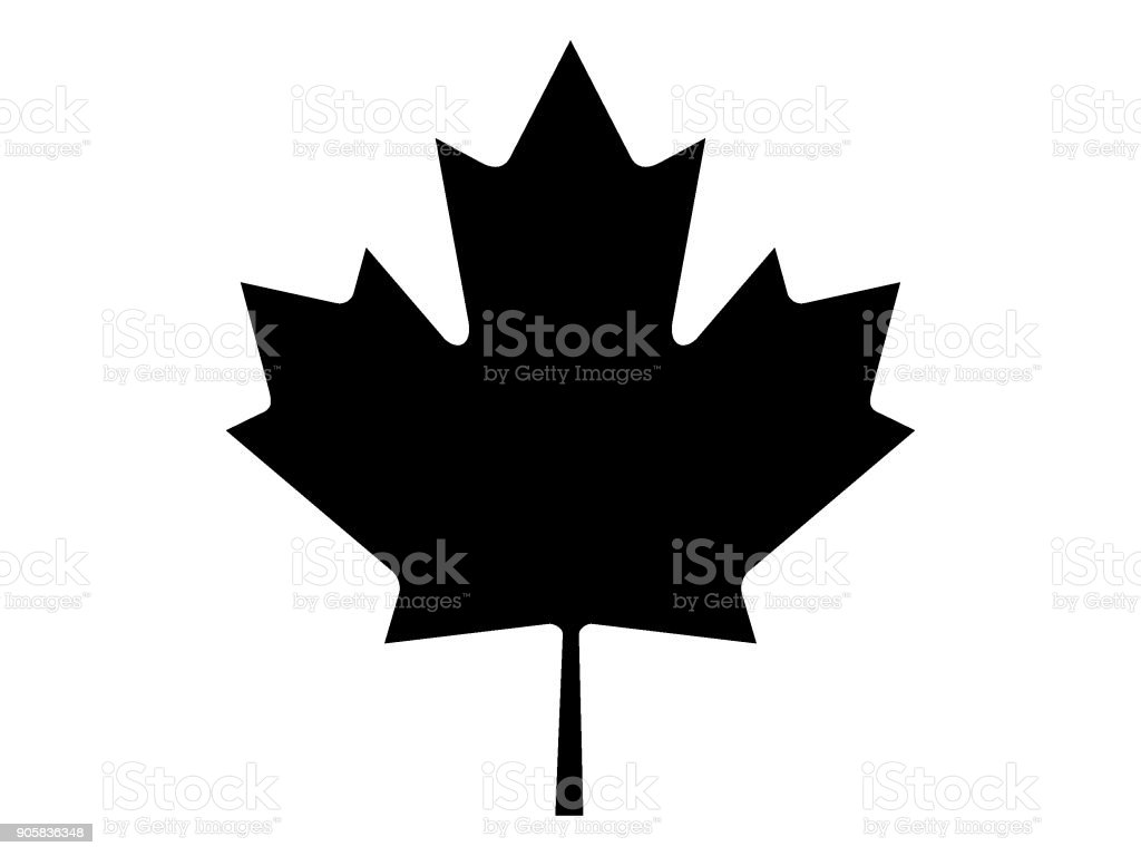 Vector illustration of the black and white Maple Leaf Image of Maple Leaf Banner - Sign stock vector