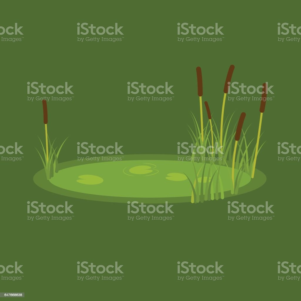 vector illustration of the marsh, reeds and water lilies on a green background vector art illustration