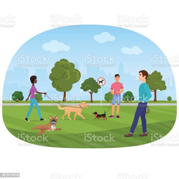 Vector illustration of the people walking with dogs in the park dog vector id672475418?b=1&k=6&m=672475418&s=612x612&h=zuzvwggz bk05lnpnzwwm90my 3wl5adpi82nlwtml8=