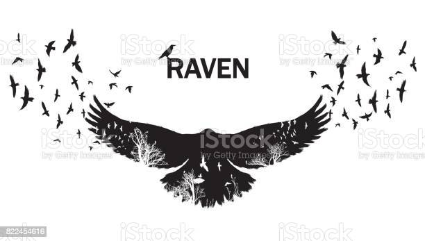 Vector illustration of the raven silhouette with the fluttering wings vector id822454616?b=1&k=6&m=822454616&s=612x612&h=h9yooyfm6lzxvif7rat7fa56dkuxjssetzm b7ahmdq=