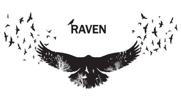 stockillustraties, clipart, cartoons en iconen met vectorillustratie van de raven silhouet met de fladderende vleugels. dubbele blootstelling effect. - ornithologie