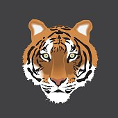Vector illustration of Tiger Head Isolated on Gray Background