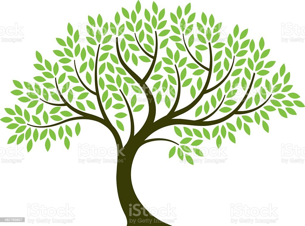 Vector illustration of tree on white background royalty-free stock vector art