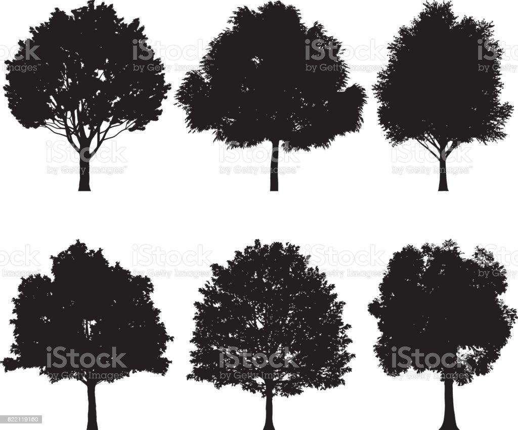 Vector illustration of tree silhouettes vector art illustration