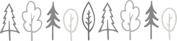 illustrazioni stock, clip art, cartoni animati e icone di tendenza di vector illustration of trees - forest bathing