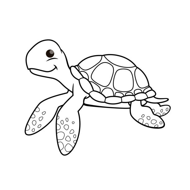 stockillustraties, clipart, cartoons en iconen met de illustratie van de vector van schildpad die op witte achtergrond wordt geïsoleerd. voor kinderen kleurboek. - leatherback