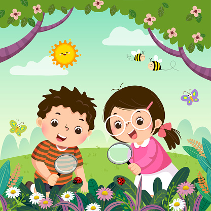 Vector illustration of two kids looking through magnifying glass at ladybugs on plants. Children observing nature.