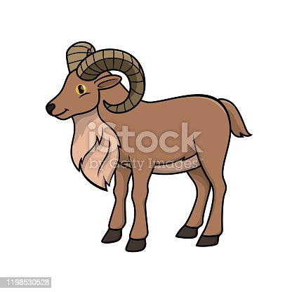 Vector illustration of urial isolated on white background.