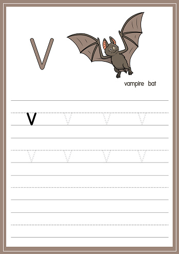 Vector illustration of Vampire bat isolated on a white background. With the lower case letter V for use as a teaching and learning media for children to recognize English letters Or for children to learn to write letters Used to learn at home and school.