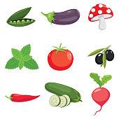 Vector Illustration Of Vegetables
